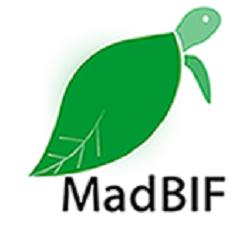 Logo MadBIF
