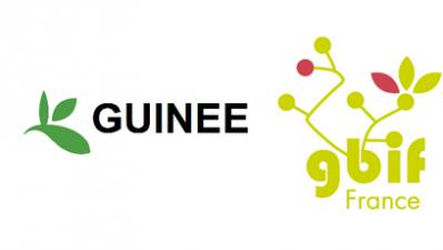 Atelier Guinée Novembre 2016