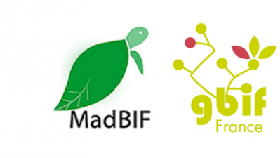 Formation MadBIF-GBIF France du 31 Mars au 05 Avril 2016 à Madagascar